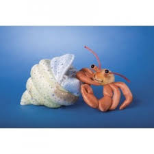 hermit crab toy
