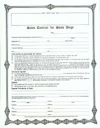 contract examples