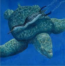 marine turtles pictures