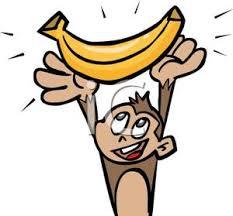 monkey holding banana
