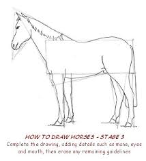 drawing pictures of horses