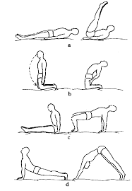 exercise position