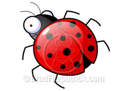 ladybugs drawings