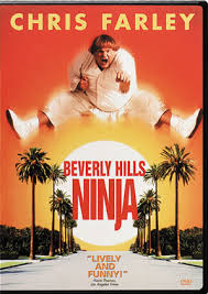 cast of beverly hills ninja