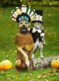indian dog costume