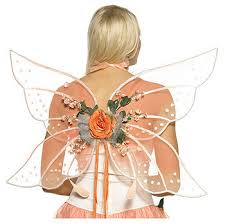 fairy wings for halloween