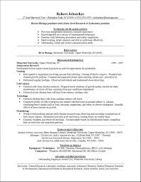 example entry level resume