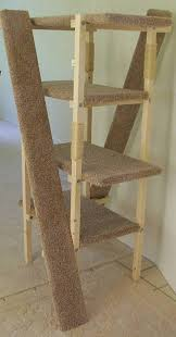 cat ramps