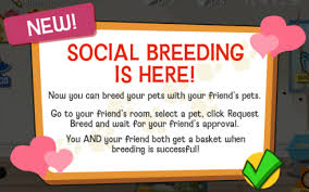pets breeding