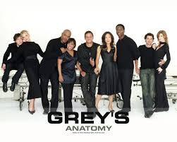 anatomy greys