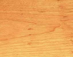 birch wood grain