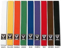 karate belts rank