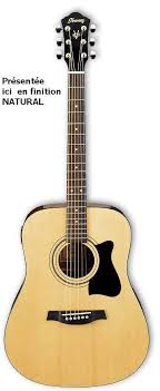 ibanez dreadnought