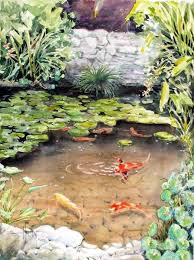 koi pond installation