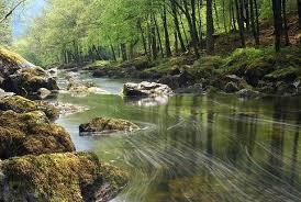 river screensavers