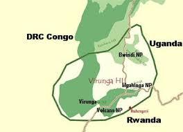 mountain gorilla maps