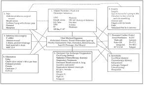 nursing concept mapping