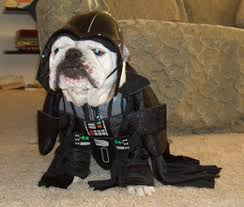 dog darth vader costume