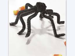 pipe cleaner spider