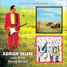 Adrian Belew - Twang Bar King