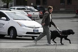 guide dog blind