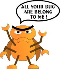 bug photos