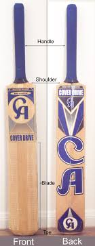 cricket bat photo