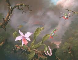 hummingbird paintings