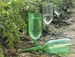 bottle waterer