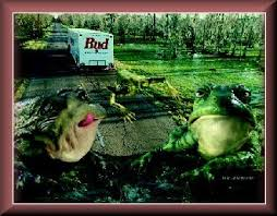 bud frogs