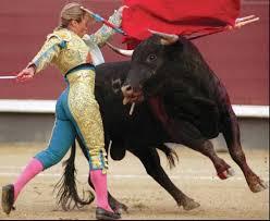matador bull fighter
