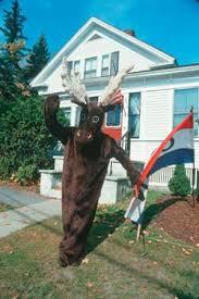 moose costumes