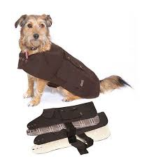drizabone dog coat