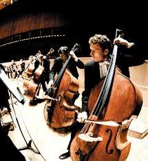 orchestra bass