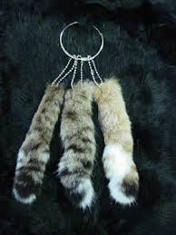 lynx tail