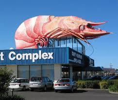 http://t0.gstatic.com/images?q=tbn:vNgoJAw7IhG71M:http://linus.it.uts.edu.au/~don/big/prawn.jpg