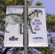 lamppost banner