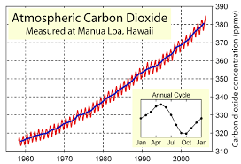 carbon dioxide atmosphere