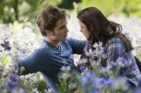 the Twilight Eclipse Movie