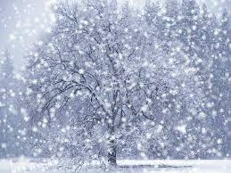 free snowfall screensaver