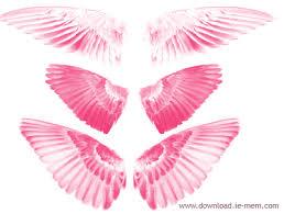 angle wing