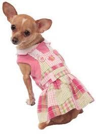 cute dog dresses