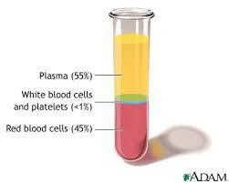 plasma platelets