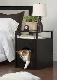 small indoor dog