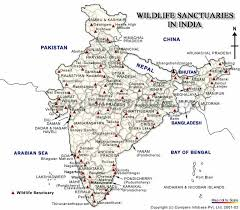 conservation of wild life in india