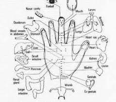 acupressure pressure points