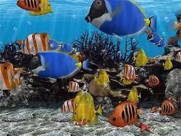 fish screen sever
