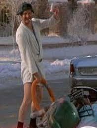 cousin eddie christmas vacation
