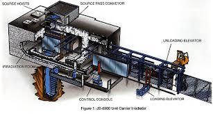 irradiation process