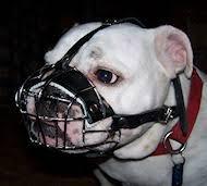 bulldog muzzle